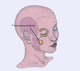 bichectomia_esq